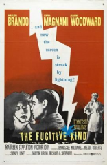 The Fugitive Kind 1960 DVD - Anna Magnani / Marlon Brando